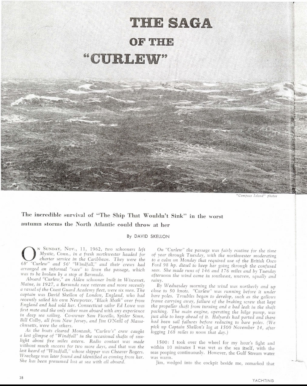 The Saga of the Curlew Page 1