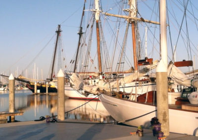 Tall Ships in the morning at dock.