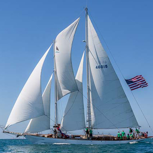 Sails and Rigging Image